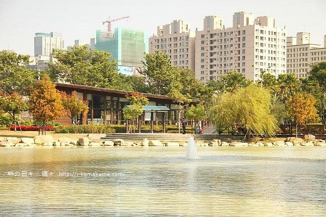 高雄凹子底森林公園落羽松-IMG_1389