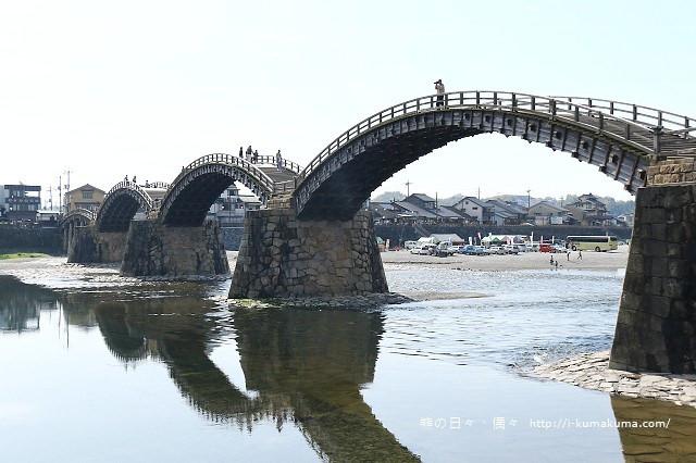 錦帶橋櫻花-3352