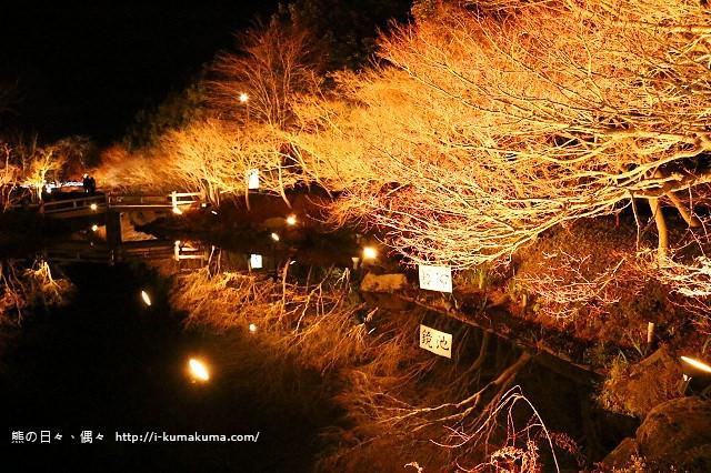 名花之里冬季彩燈-3801