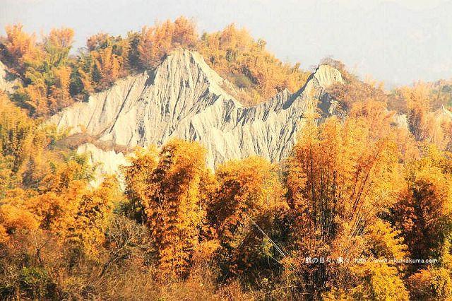 台南草山月世界大峽谷-2885