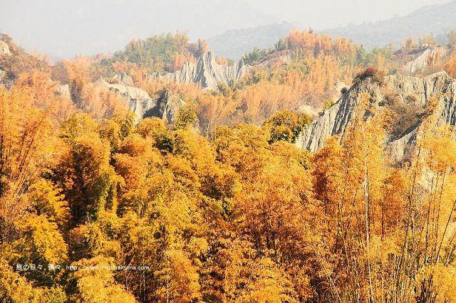 台南草山月世界大峽谷-2893