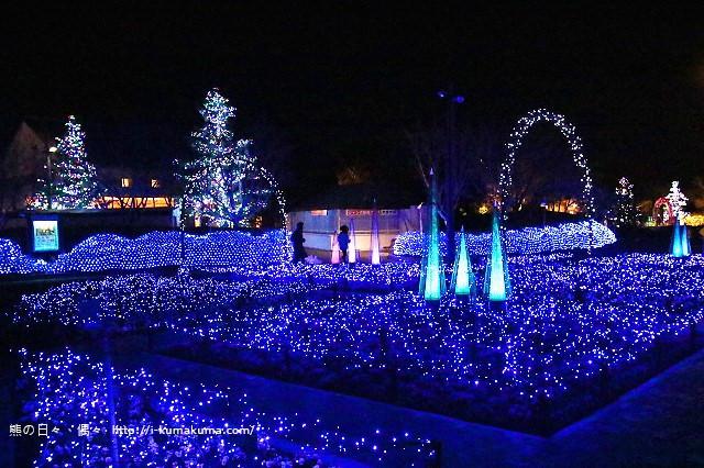 名花之里冬季彩燈-3836