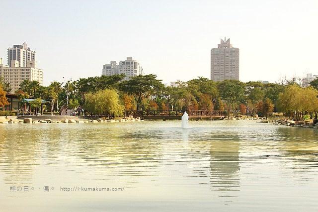 高雄凹子底森林公園落羽松-IMG_1308