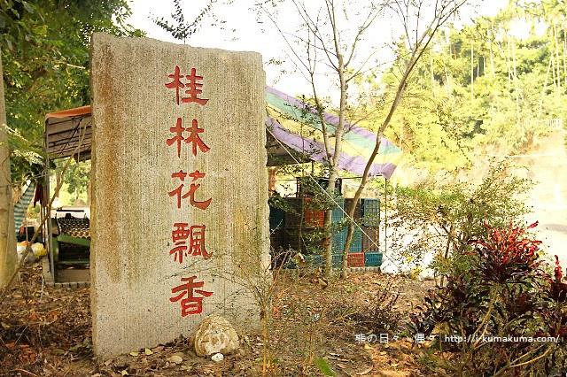雲林桂林村落羽松-IMG_9959