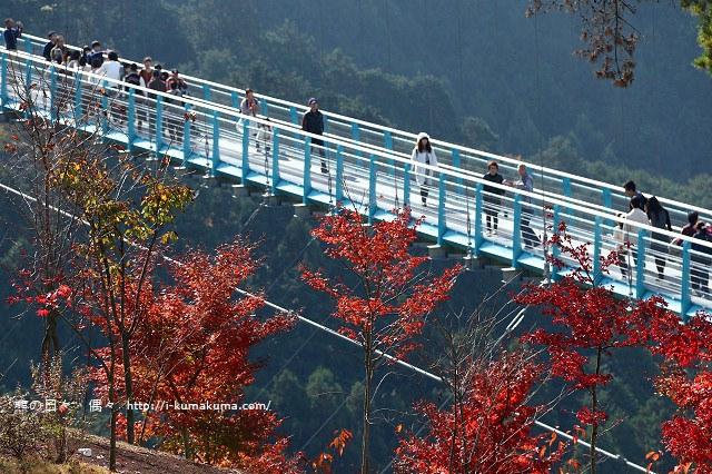三島大吊橋(skyWalk)-K24A6621