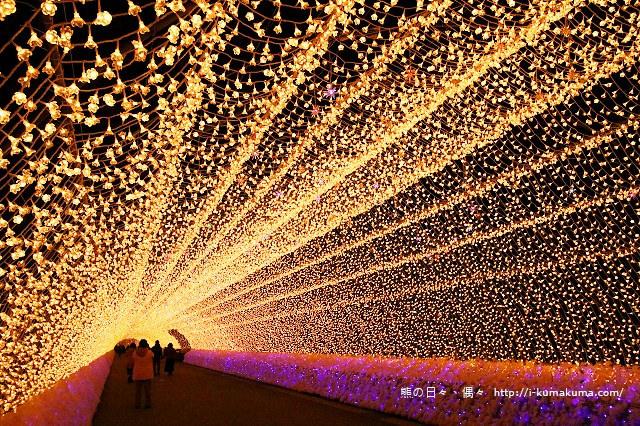 名花之里冬季彩燈-3658