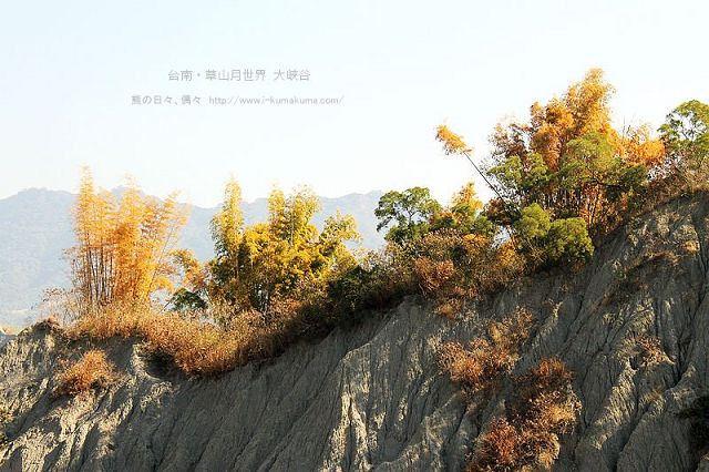 台南草山月世界大峽谷-2814