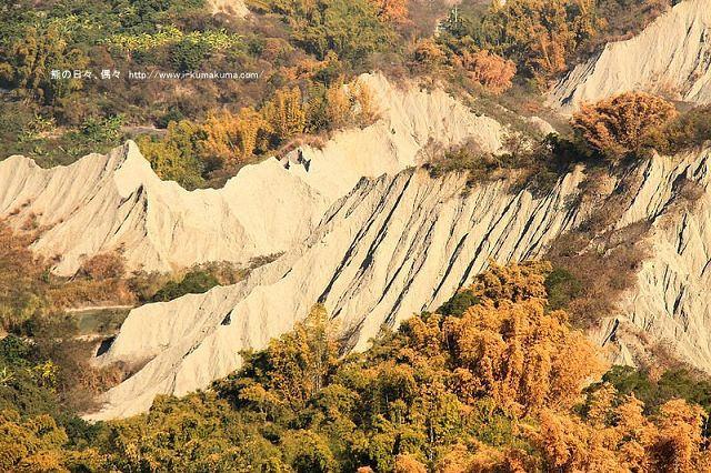 台南草山月世界308高地-2595