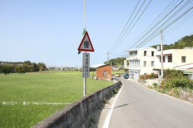 苗栗石鎮里櫻花大道-7103