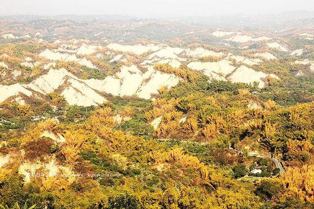 台南草山月世界308高地-2435