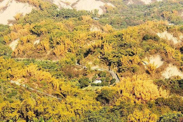 台南草山月世界308高地-2449