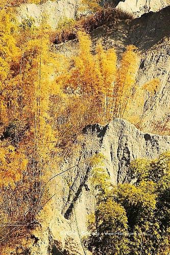 台南草山月世界大峽谷-2983