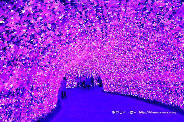 名花之里冬季彩燈-3522