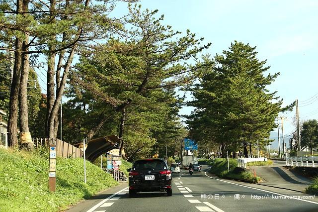 三島大吊橋(skyWalk)-K24A6435