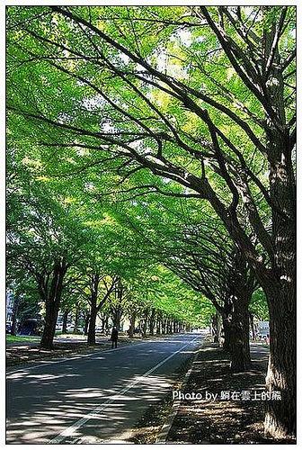 北海道大學-01
