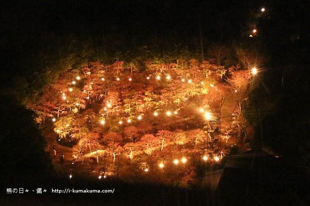 名花之里冬季彩燈-3577