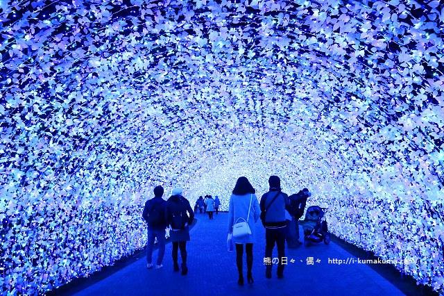 名花之里冬季彩燈-3519