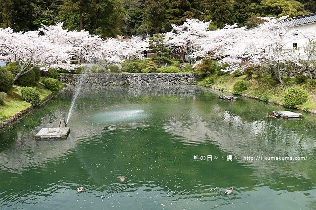 吉香公園-4013