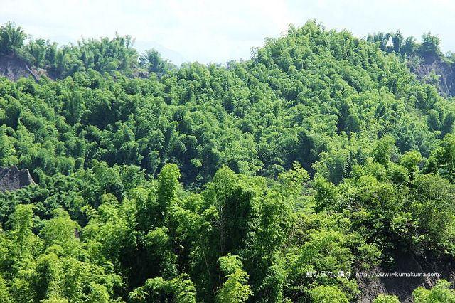台南草山月世界大峽谷-2617