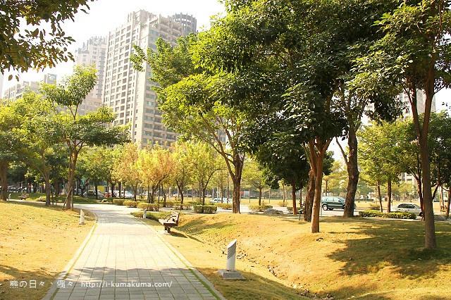 高雄凹子底森林公園落羽松-IMG_1253