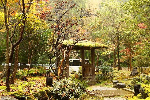 箱根小涌谷温泉 水の音-K24A4851