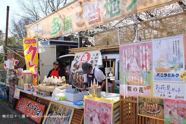 國營昭和紀念公園櫻花-7025