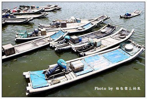 彰化王功漁港-02