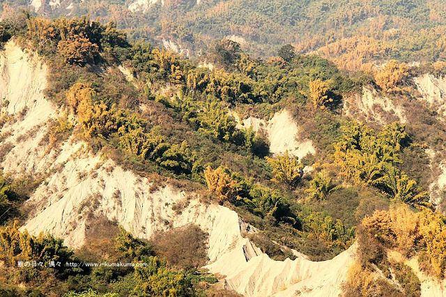 台南草山月世界308高地-2745