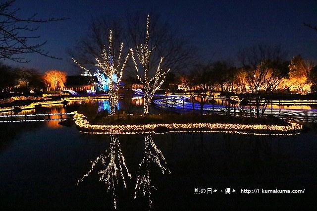 名花之里冬季彩燈-3021