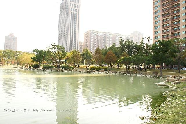 高雄凹子底森林公園落羽松-IMG_1318