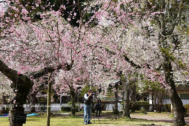吉香公園-3677