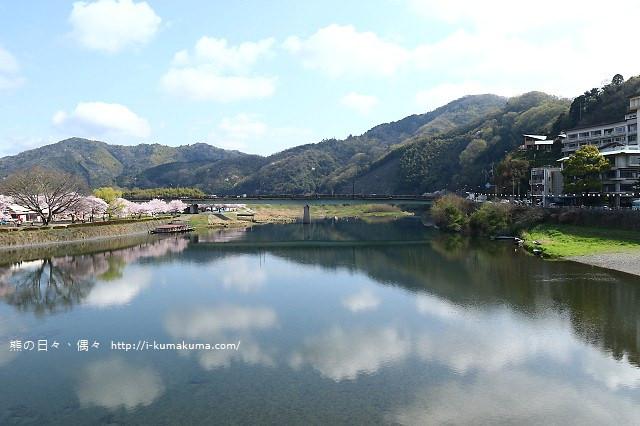 錦帶橋櫻花-3188