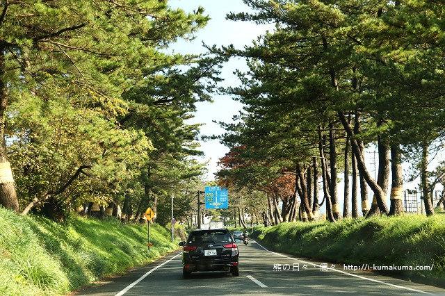 三島大吊橋(skyWalk)-K24A6436