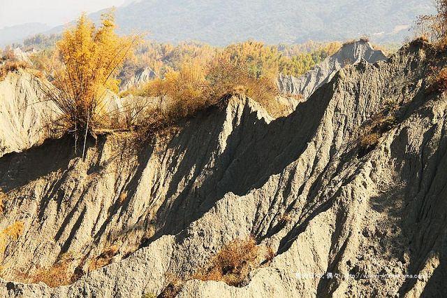 台南草山月世界大峽谷-2841