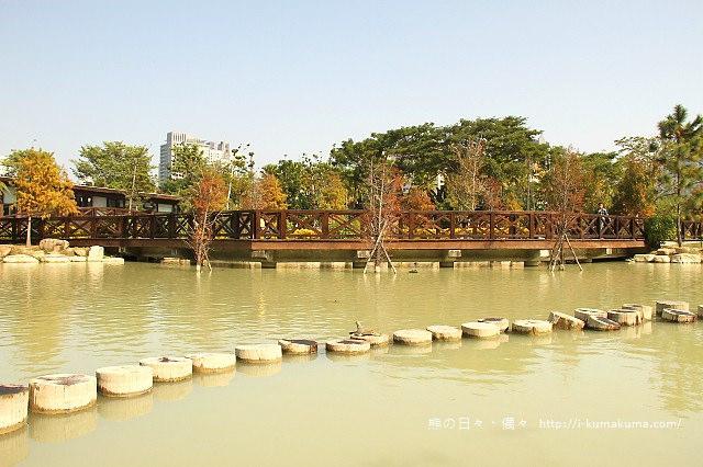 高雄凹子底森林公園落羽松-IMG_1473