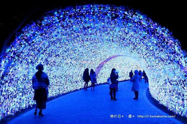 名花之里冬季彩燈-3496