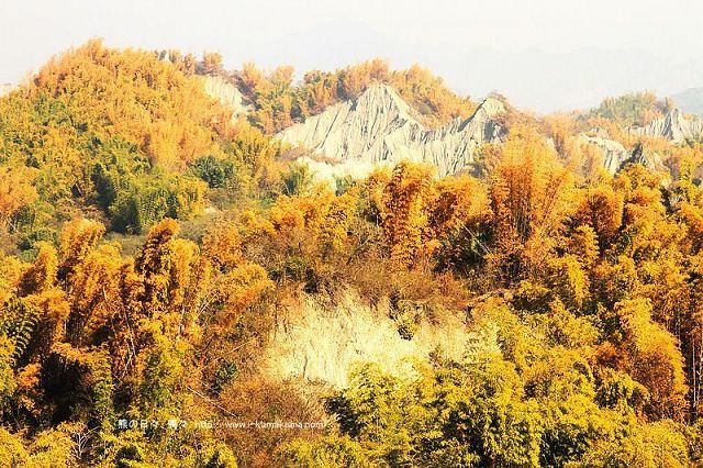 台南草山月世界大峽谷-2941