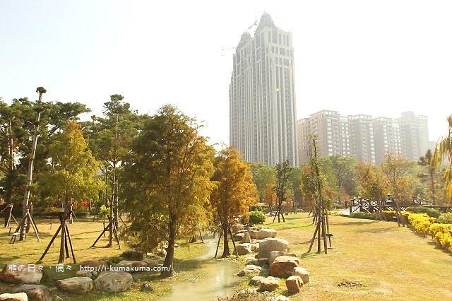 高雄凹子底森林公園落羽松-IMG_1092