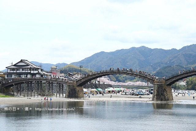 錦帶橋櫻花-4188
