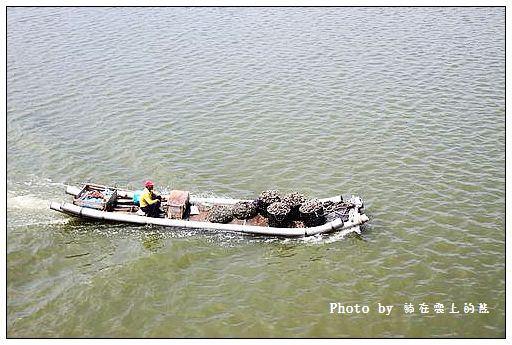 彰化王功漁港-20
