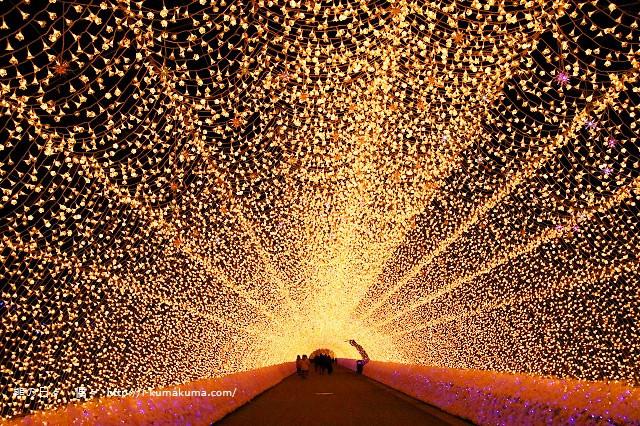 名花之里冬季彩燈-3664