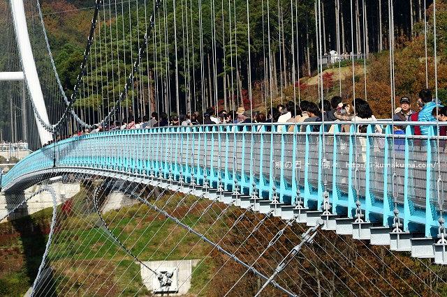 三島大吊橋(skyWalk)-K24A6689