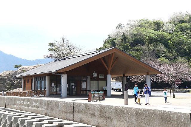 廣島大久野島(兔島)-K24A2366
