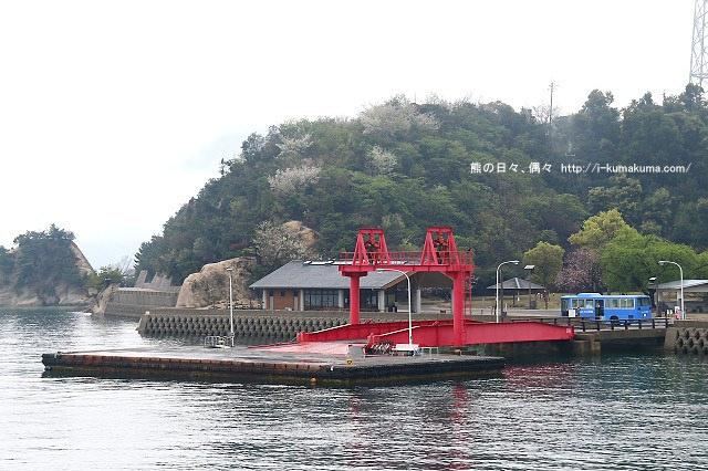 廣島大久野島(兔島)-K24A0527