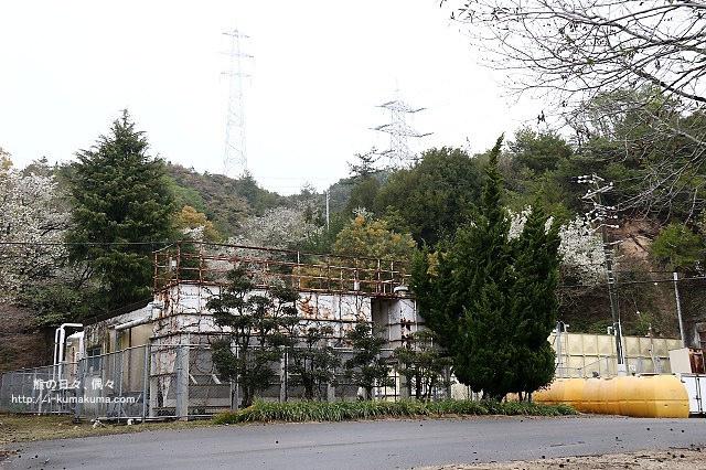 廣島大久野島(兔島)-K24A1302