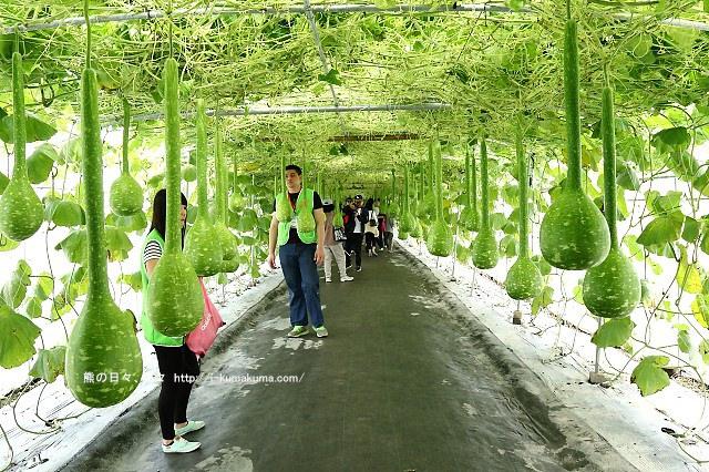 2016屏東熱帶農業博覽會-K24A9329