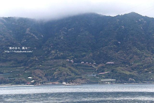 廣島大久野島(兔島)-K24A1995
