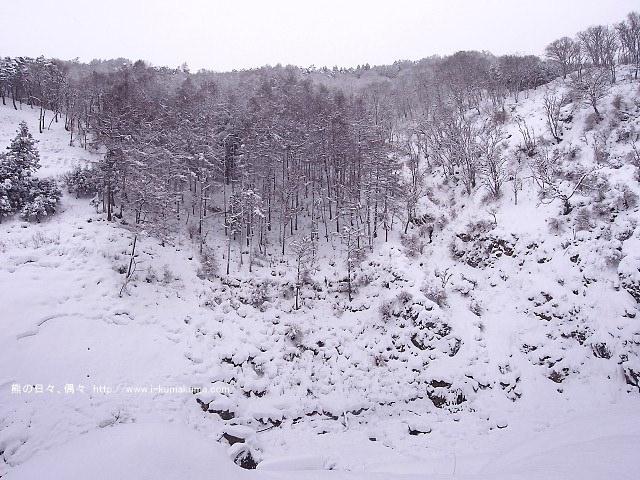 地獄谷野猿公苑-R0033289