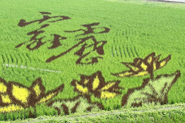 2016屏東熱帶農業博覽會-K24A9016