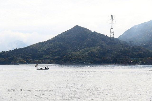 廣島大久野島(兔島)-K24A1592
